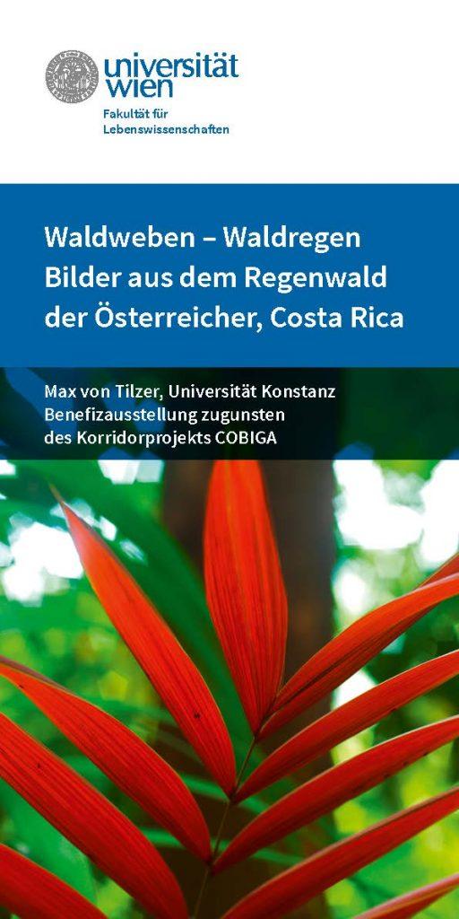Fotoausstellung-Waldweben-Folder